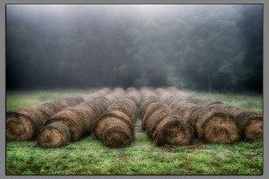 10_Foggy_Hay_Bales