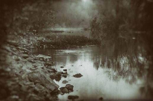 Harpeth Fog