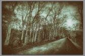 Spillway Road