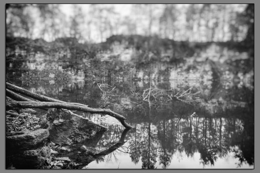 Hidden Lake #04