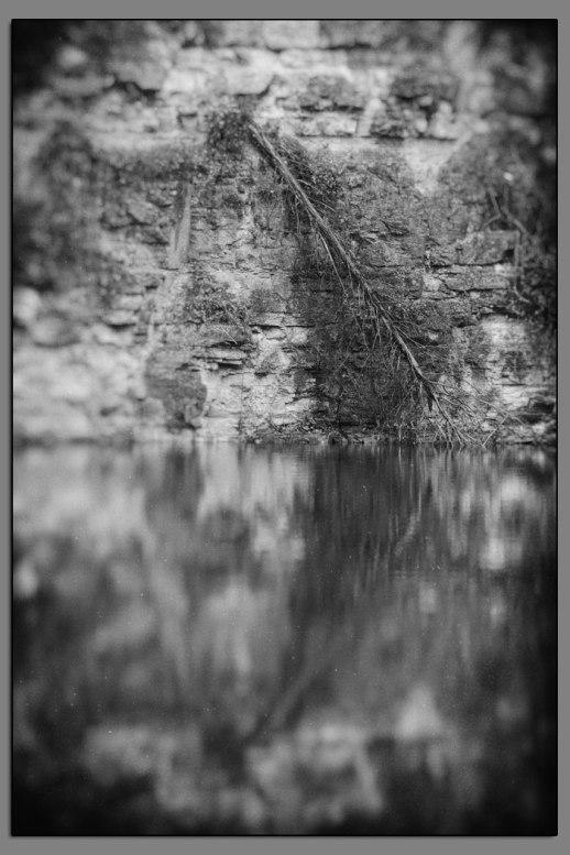Hidden Lake #06