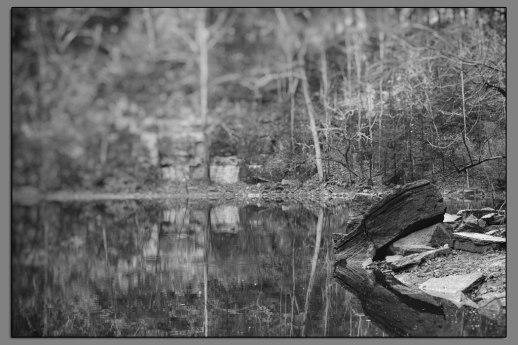 Hidden Lake #07