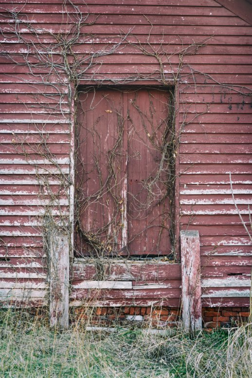 """Commissary Door and Vines"", Cumberland Furnace, TN ~ © ALL IMAGES COPYRIGHT PROTECTED. ALL RIGHTS RESERVED. – DAVID L. MOREL ~ 2014"