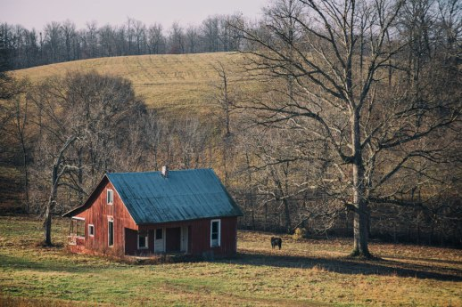 """Farm House and Cow"", Cumberland Furnace, TN ~ © ALL IMAGES COPYRIGHT PROTECTED. ALL RIGHTS RESERVED. – DAVID L. MOREL ~ 2014"