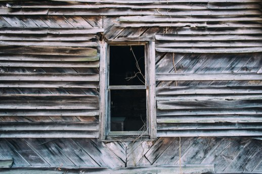 """Window and Vines"", Vanleer, TN ~ © ALL IMAGES COPYRIGHT PROTECTED. ALL RIGHTS RESERVED. – DAVID L. MOREL ~ 2014"